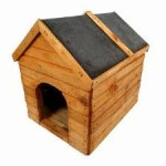 5 Great Ways On Building A Dog House