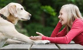 animal-communication-singapore-benefit